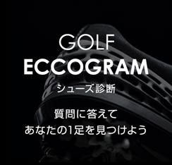 GOLF_ECCOGRAM